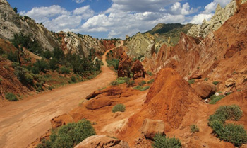 Cottonwood Canyon Tour - Grand Staircase Escalante